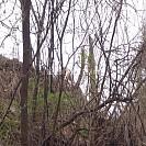 [76번째 여행 5편][정선 오지에 가다][2일차] 덕산기 계곡에서 은철이 전천후 버디(Birdy)가 되다.