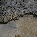 [40번째 여행 2편][변산반도 여행][2일차] 채석강에서 / 2007.04.08