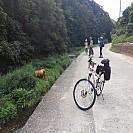 [73번째 여행 5편][14년만에 처음 간 울진, 왕피리 여행] [2일차] 드디어 왕피리에 간다!! 그리고 계곡 물놀이
